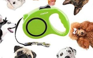 Поводок для собак из Китая, качество изделия, длина ленты, видео