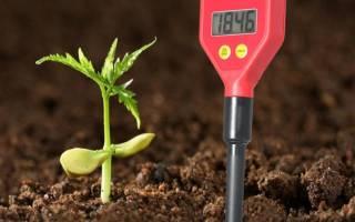 Как нормализовать кислотность почвы, чем известковать