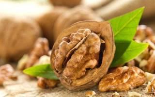 Перегородки грецких орехов — лечебные свойства и противопоказания к применению, лечение узлов щитовидной железы, настойка на водке, видео