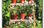 Лестница для цветов своими руками, инструкция по изготовлению