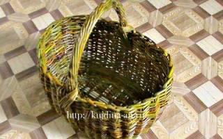 Плетение корзин из ивы для начинающих своими руками, видео