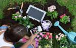 Полезные видео для садоводов