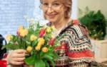 Комнатная лилия — уход в домашних условиях, правила посадки, фото, видео