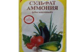 Применение сульфата аммония при выращивании клубники, видео