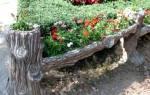 ТОП 30 неприхотливых долгоцветущих многолетников цветов для сада и дачи, фото, видео