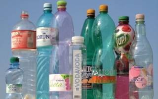 Поделки из пластиковых бутылок своими руками, что можно сделать для сада, огорода и дачи, изготовление зверей, видео