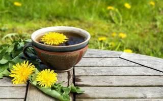 Чай из одуванчиков — польза и вред, рецепт приготовления, видео