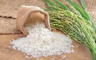 Рис для плова, как выбирать, какой вид и сорт лучше использовать