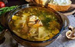 Грибной суп из сушенных грибов, рецепт приготовления на курином бульоне, видео