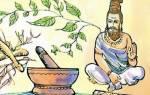Лечебные свойства индийского лука в народной медицине, видео
