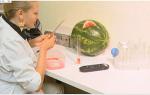 Как выбрать арбуз без нитратов, чем накачивают арбузы, признаки нитратного арбуза, видео