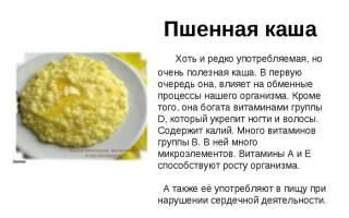 Польза пшеничной каши, калорийность, польза и вред для похудения