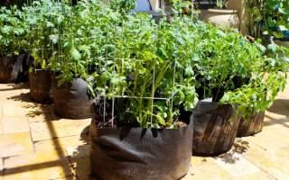Как вырастить картофель в мешках, видео