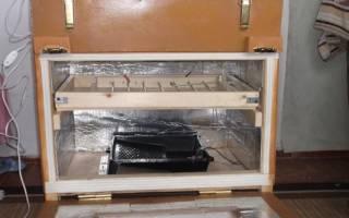 Инкубатор самодельный — устройство и принцип работы, видео