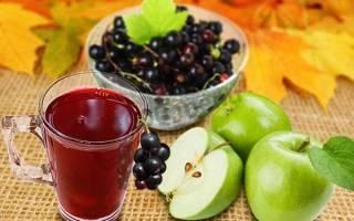 Компот из черноплодки с яблоками на зиму, рецепты приготовления, видео