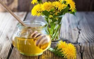 Мед из одуванчиков — рецепты приготовления в домашних условиях, видео