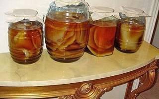 Чайный гриб — полезные свойства и противопоказания, как вырастить с нуля, как ухаживать, видео