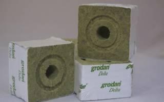 Кубики из минеральной ваты для рассады, способы применения, видео