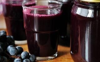 Виноградный сок на зиму – готовим быстро и просто, видео