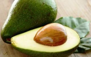 Авокадо — полезные свойства косточки плода, видео