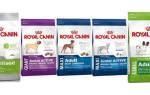 Корм Роял Канин для собак — линейки для разных пород, щенков, больных собак, видео