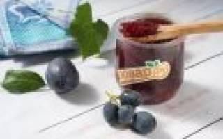 Виноградное варенье — рецепты приготовления на зиму с косточками и без косточек, видео