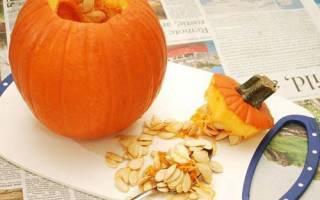 Семена тыквы — как сушить, применение с медом, полезные свойства, видео