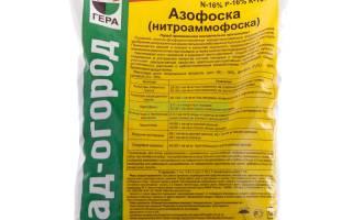 Азофоска — использование для удобрения клубники на любых почвах, видео