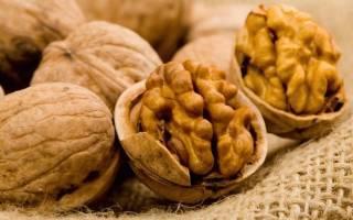 Грецкий орех — польза и вред для организма, калорийность, полезные свойства для здоровья женщин, мужчин, при грудном вскармливании, видео