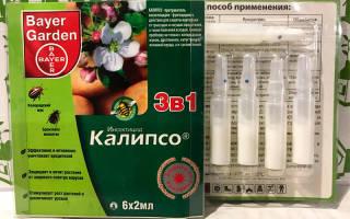 Инсектицид Клопс, описание и действие препарата, видео