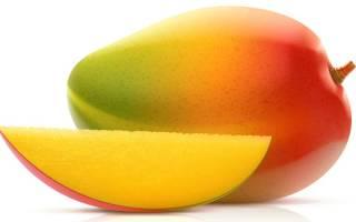 Как вырастить манго: нюансы проращивания, посадки косточки, видео